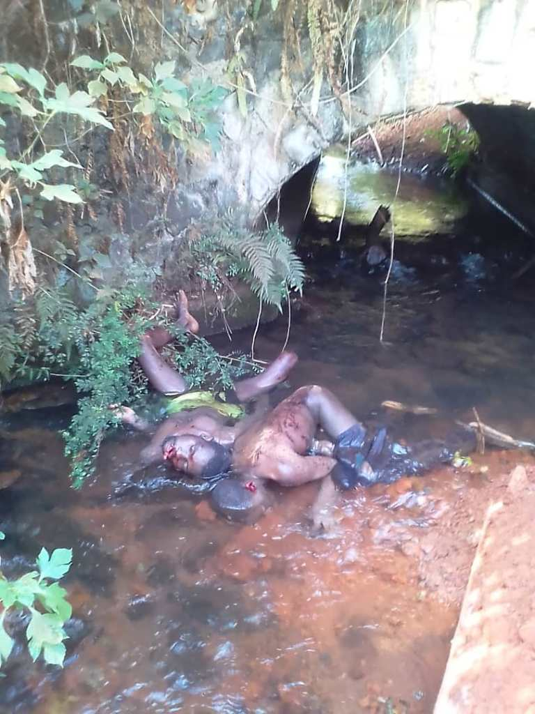 Corpses in river in Bambui