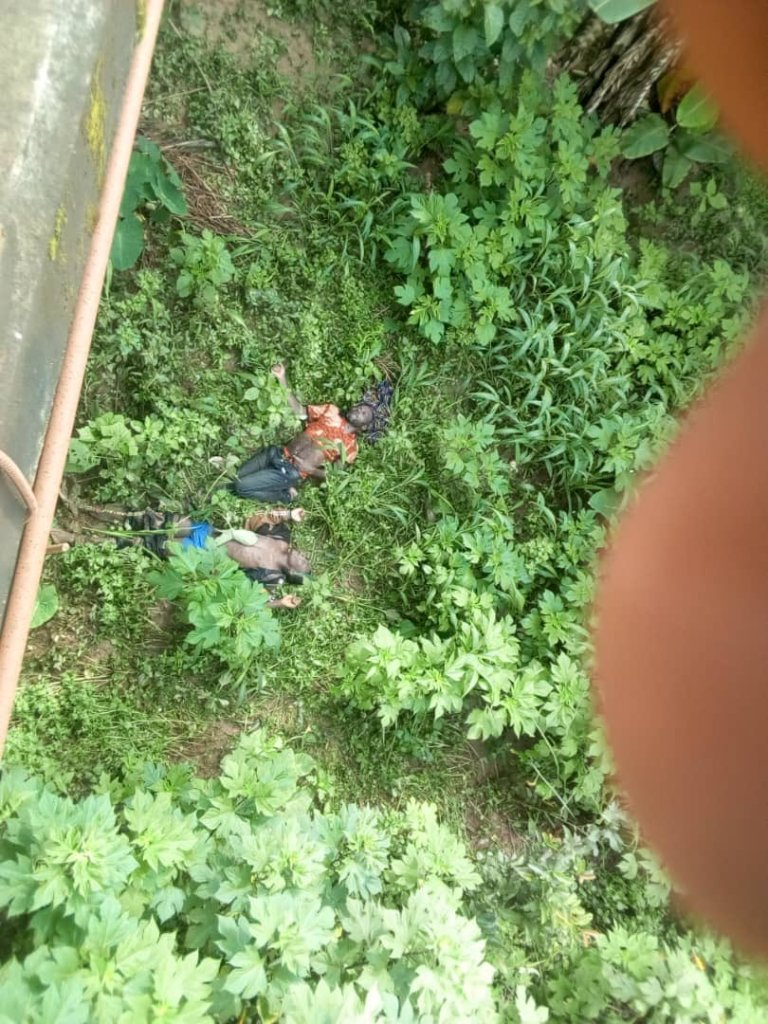 Corpses-dumped-at-nahkah-bridge-in-Bali-nyounga 28 Sept, 2020
